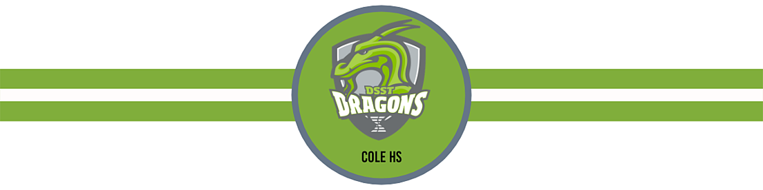 Copy of SSD logos (5)